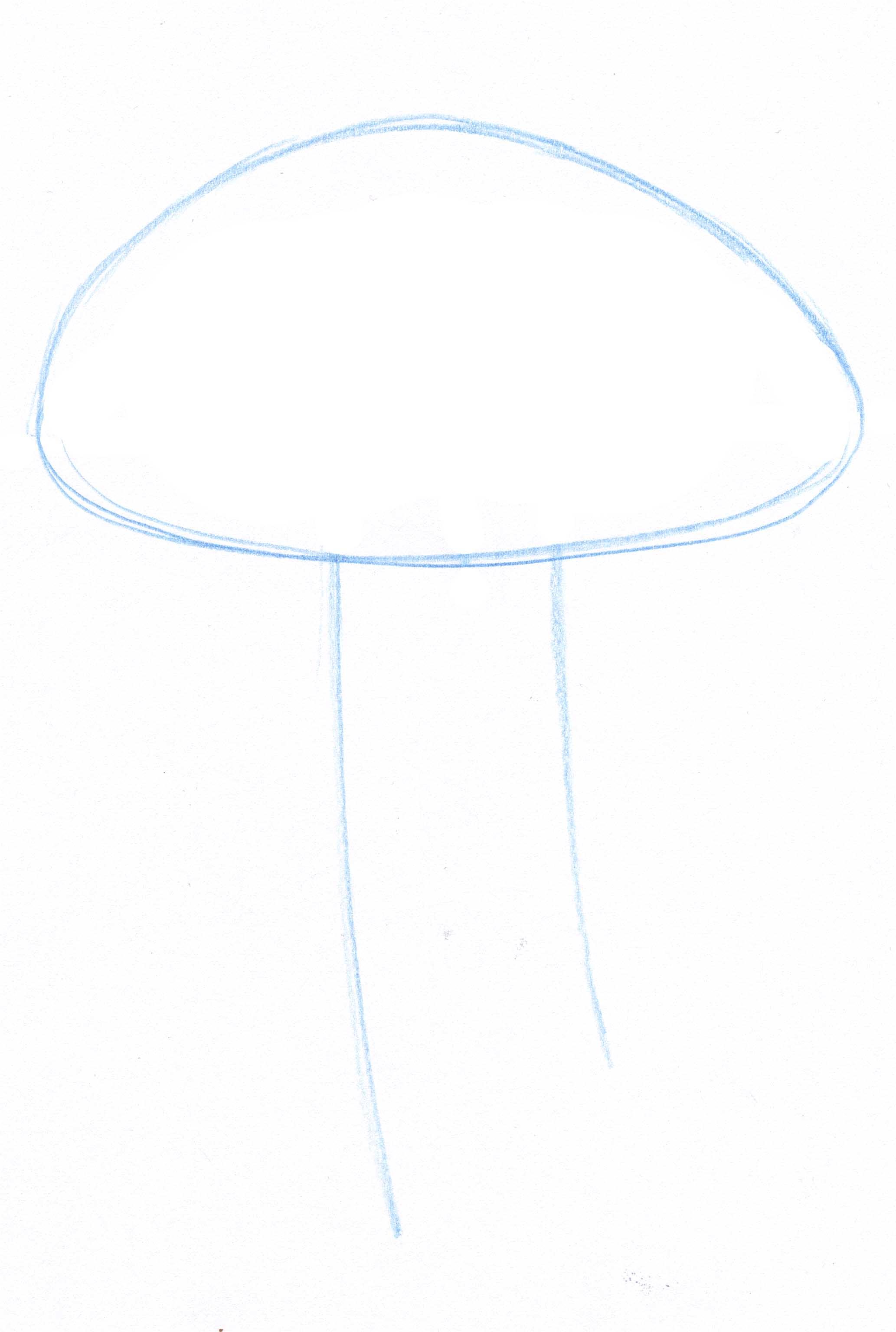Drawing Lines Visual Basic : Top view john muir laws