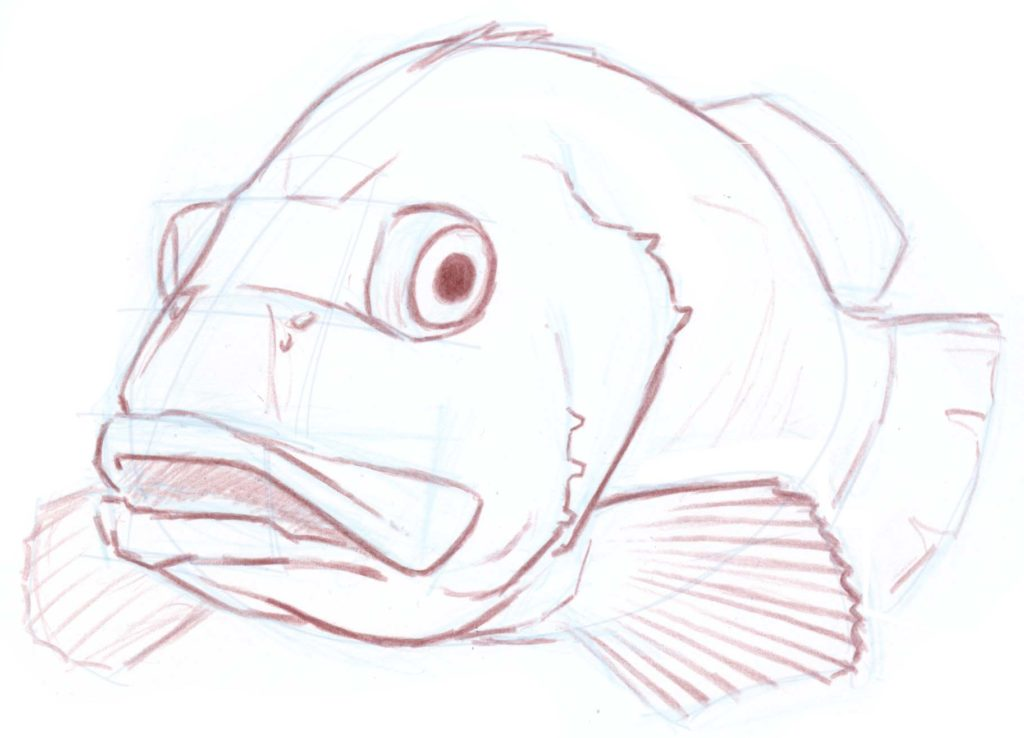 How to draw a foreshortened fish (sea bass)