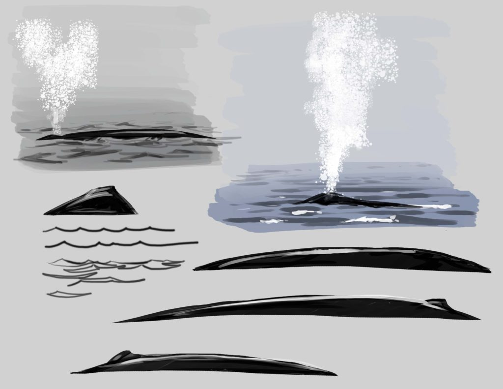 Thar She Blows! How to Draw Whales in the Wild