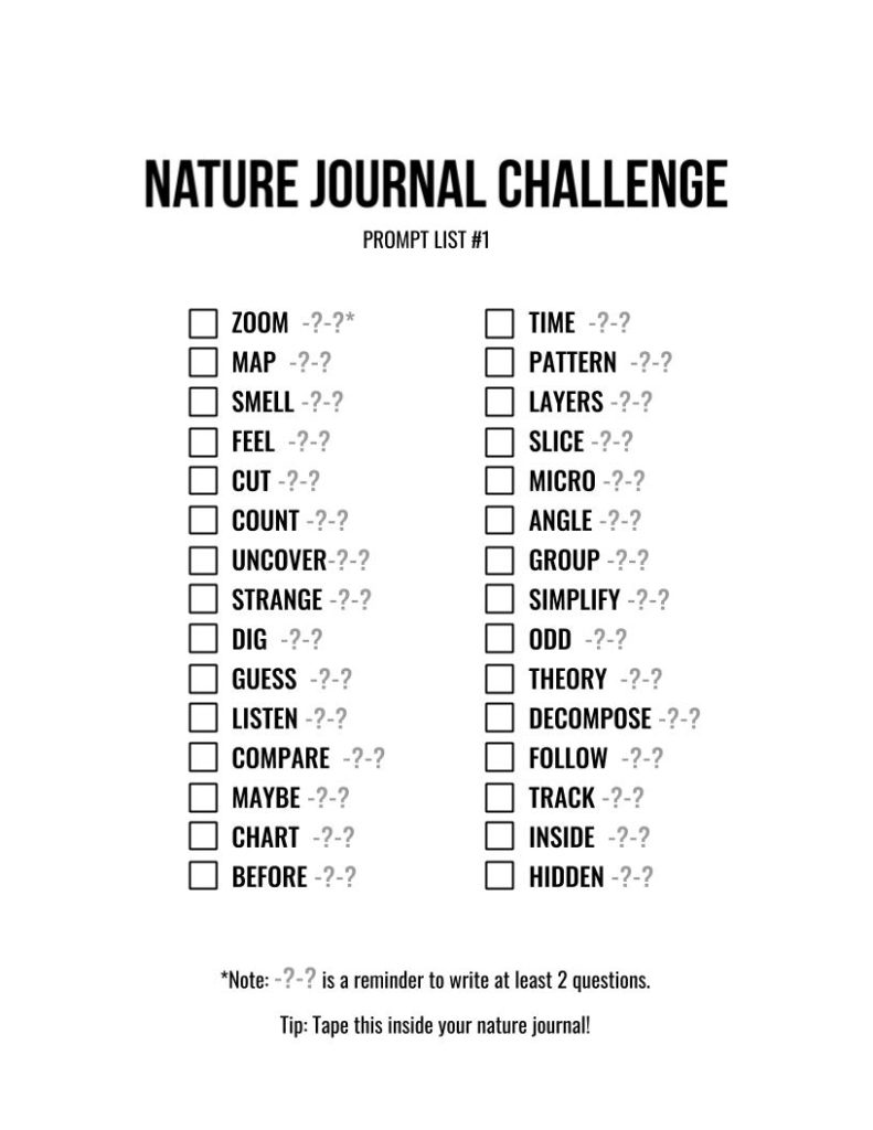 The Nature Journal Challenge