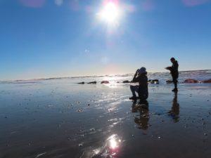 ocean journaling
